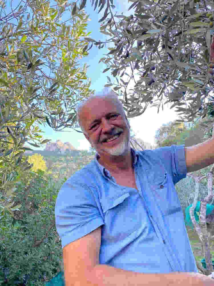 cheerful olive harvest Sufi Earth Spirit Cala Jami